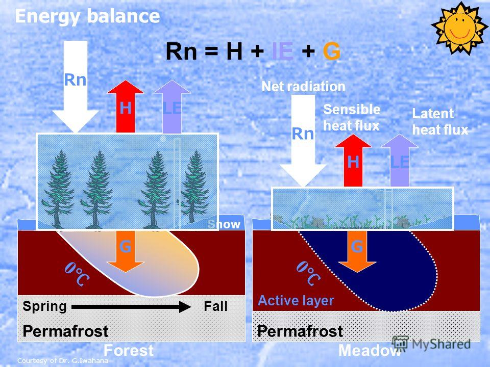 Energy balance Permafrost 0 0 Snow ForestMeadow G Rn HLE Net radiation Rn HLE G Sensible heat flux Latent heat flux Rn = H + lE + G SpringFall Permafrost Active layer Courtesy of Dr. G.Iwahana