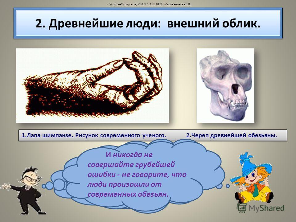 2. Древнейшие люди: внешний облик. 1. Лапа шимпанзе. Рисунок современного ученого. 2. Череп древнейшей обезьяны. Сравните ее со своей рукой. Что вы заметили? На коже ладоней у человека и шимпанзе похожие узоры. Все указывает на то, что и люди, и тепе