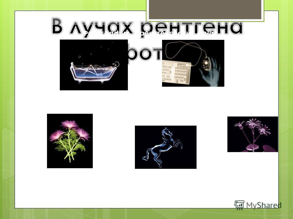 Фотография в рентгеновских лучах