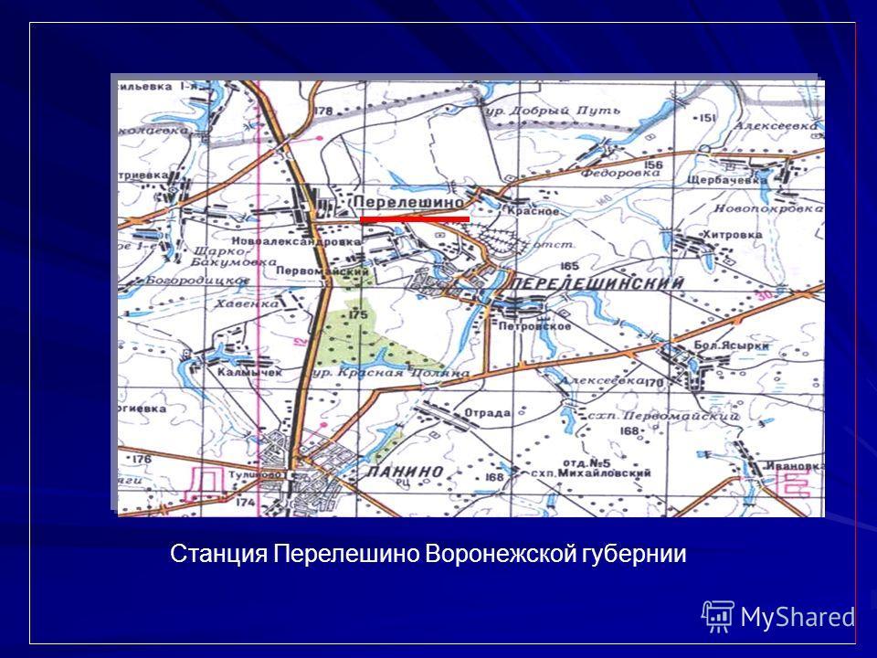 Станция Перелешино Воронежской губернии