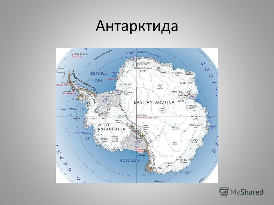 Антарктида. Географическое положение. История открытия. Современные исследования Презентацию подготовила Петрова О.А.