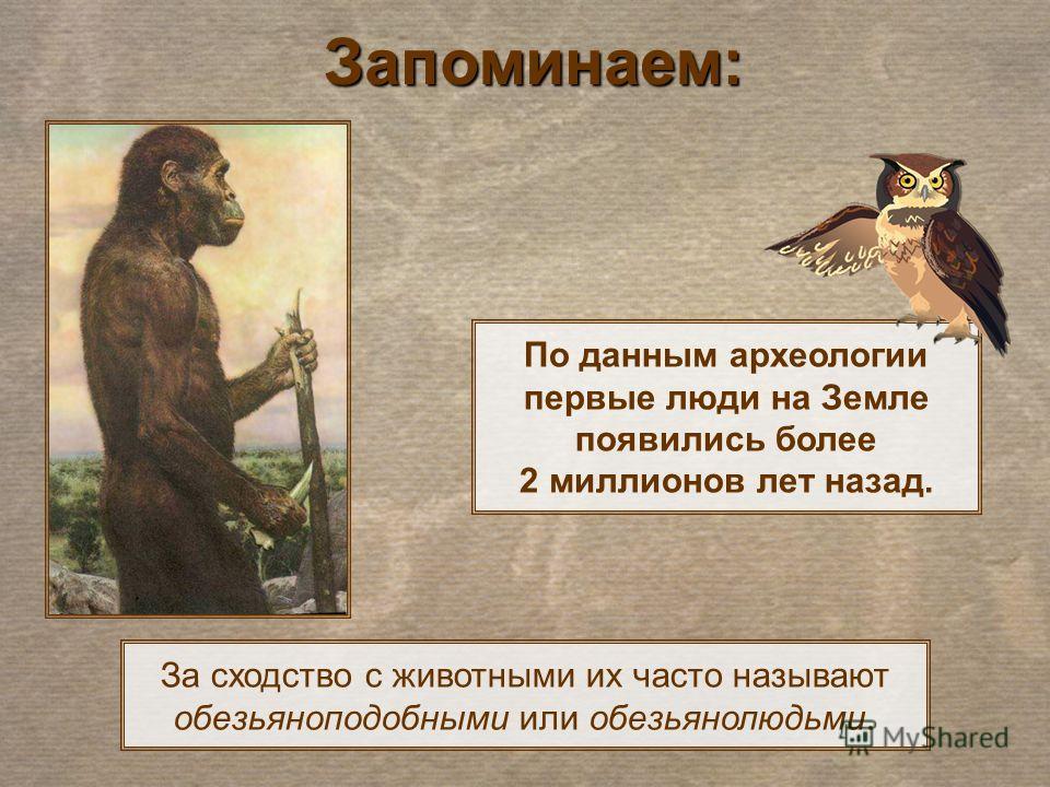За сходство с животными их часто называют обезьяноподобными или обезьянолюдьми. По данным археологии первые люди на Земле появились более 2 миллионов лет назад. Запоминаем: Запоминаем: