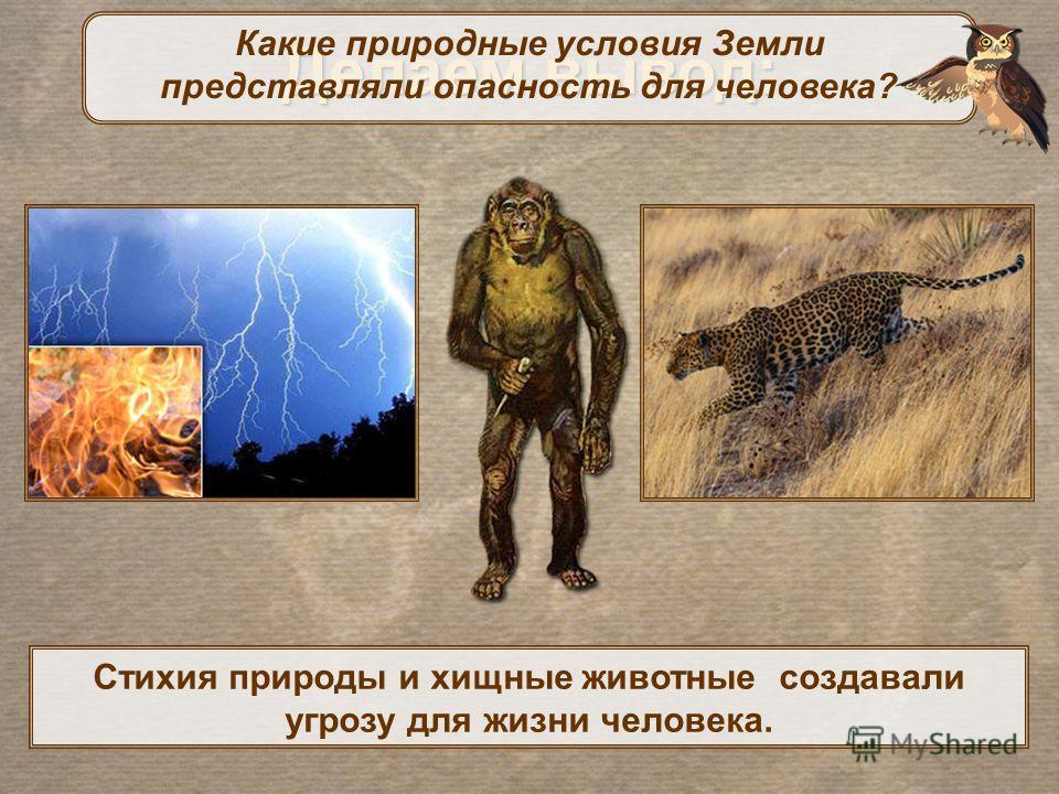 Делаем вывод: Стихия природы и хищные животные создавали угрозу для жизни человека. Какие природные условия Земли представляли опасность для человека?