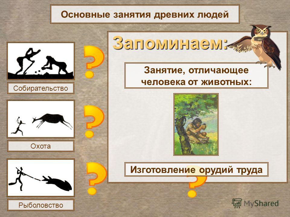 Основные занятия древних людей Собирательство Охота Рыболовство Занятие, отличающее человека от животных: Изготовление орудий труда Запоминаем: Запоминаем: