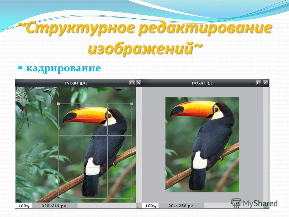 ~Структурное редактирование изображений~ кадрирование