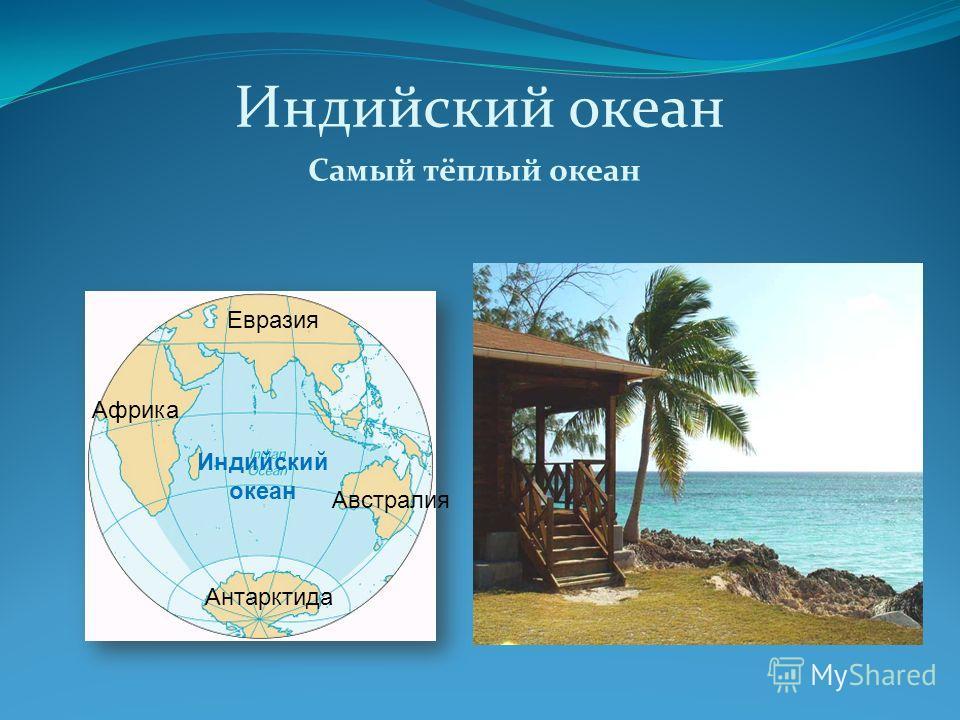 Индийский океан Самый тёплый океан Индийский океан Евразия Африка Австралия Антарктида
