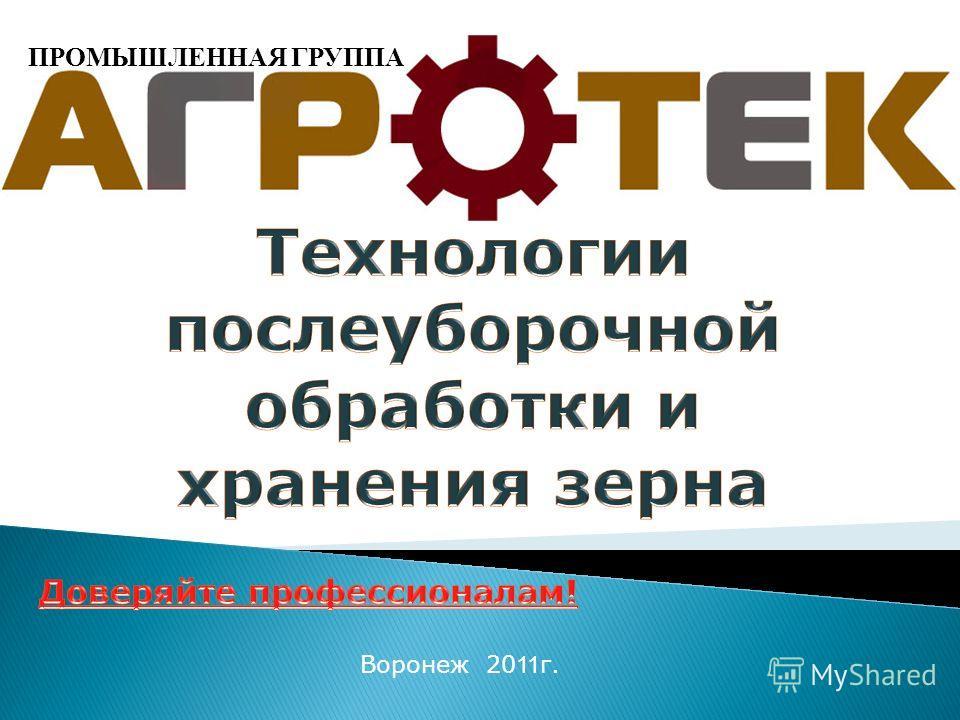 Воронеж 20 11 г. ПРОМЫШЛЕННАЯ ГРУППА