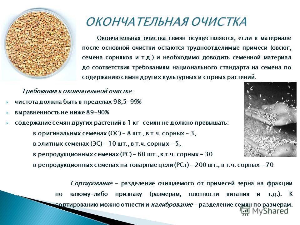 Окончательная очистка семян осуществляется, если в материале после основной очистки остаются трудноотделимые примеси (овсюг, семена сорняков и т.д.) и необходимо доводить семенной материал до соответствия требованиям национального стандарта на семена