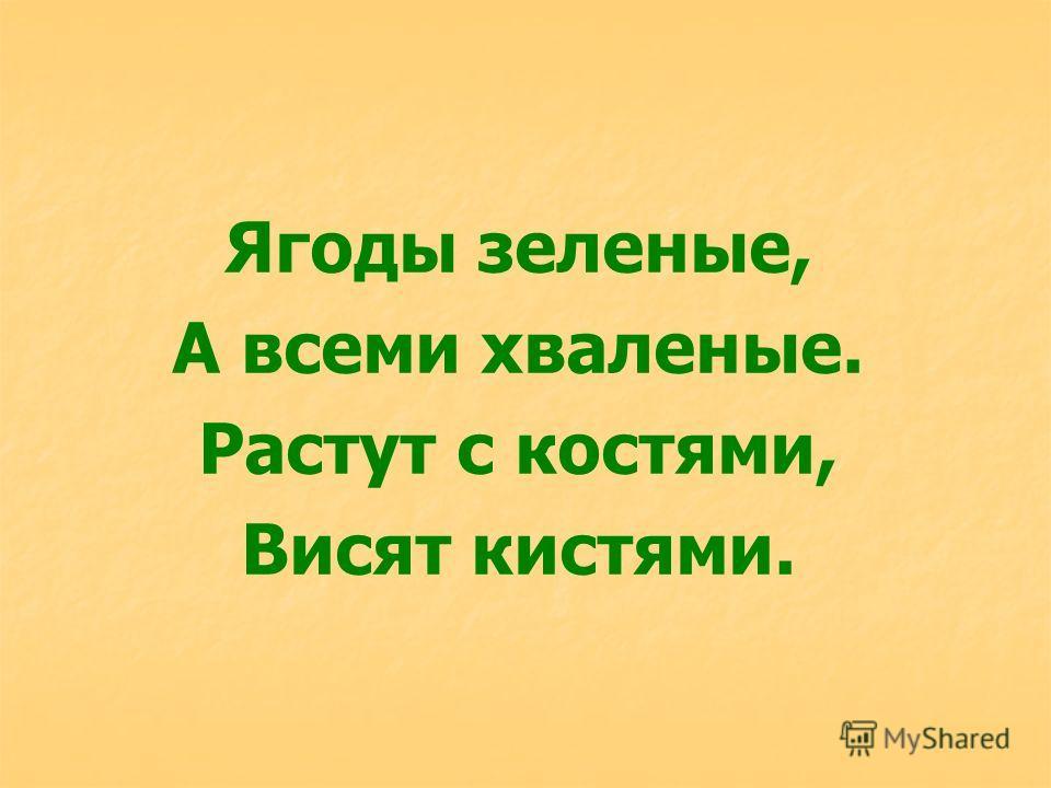 Ягоды зеленые, А всеми хваленые. Растут с костями, Висят кистями.