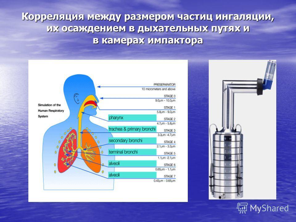 Корреляция между размером частиц ингаляции, их осаждением в дыхательных путях и в камерах импактора