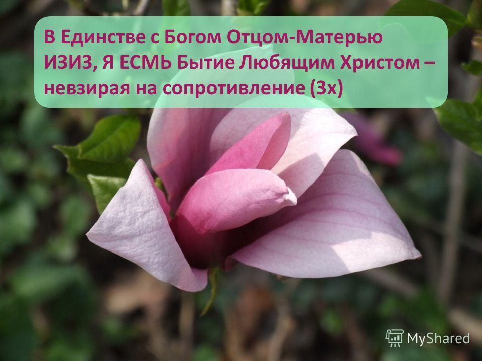 В Единстве с Богом Отцом-Матерью ИЗИЗ, Я ЕСМЬ Бытие Любящим Христом – невзирая на сопротивление (3 х)