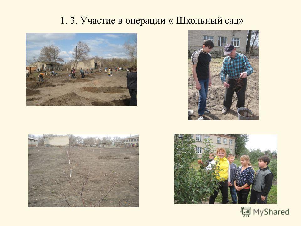 1. 3. Участие в операции « Школьный сад»