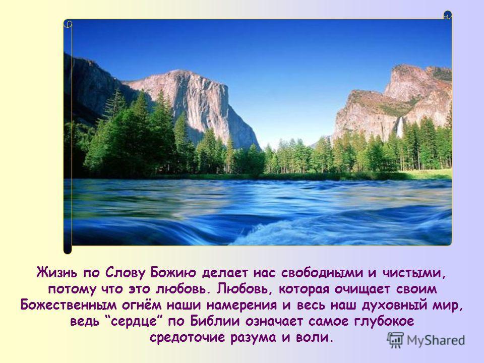 Блаженны чистые сердцем, ибо они Бога узрят (Мф 5,8)