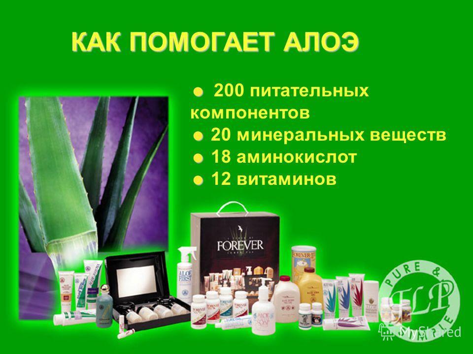 КАК ПОМОГАЕТ АЛОЭ 200 питательных компонентов 20 минеральных веществ 18 аминокислот 12 витаминов
