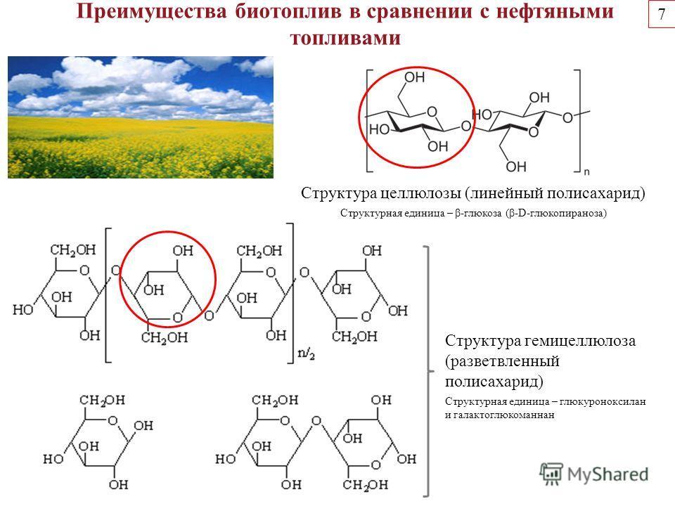 Преимущества биотопливоо в сравнении с нефтяными топливами Структура целлюлозы (линейный полисахарид) Структурная единица – β-глюкоза (β-D-глюкопираноза) Структура гемицеллюлоза (разветвленный полисахарид) Структурная единица – глюкуроноксилан и гала