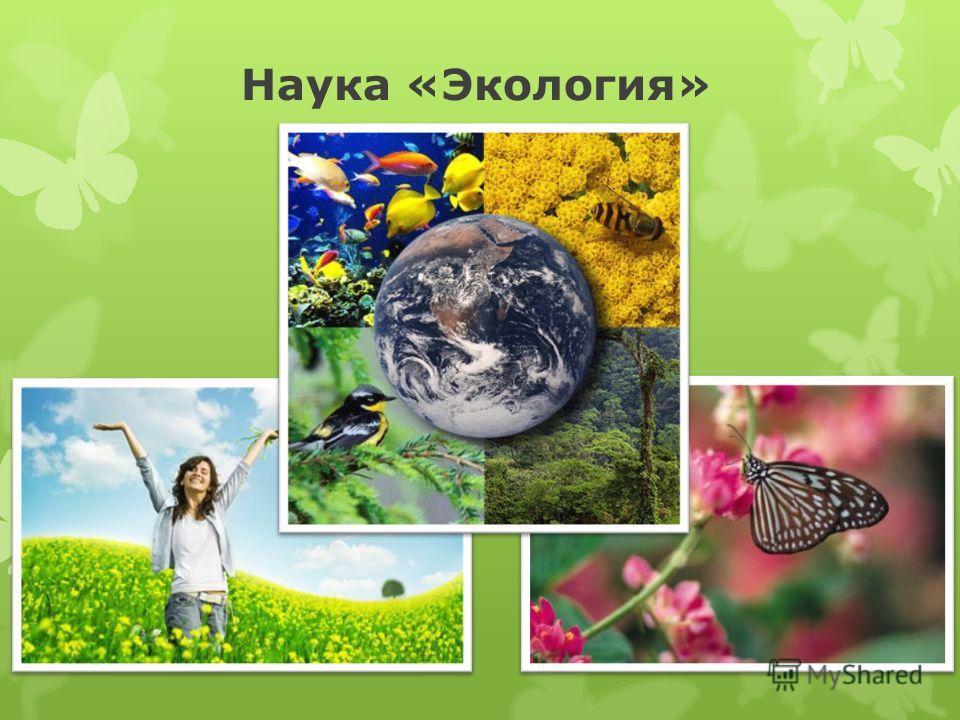 Наука «Экология»