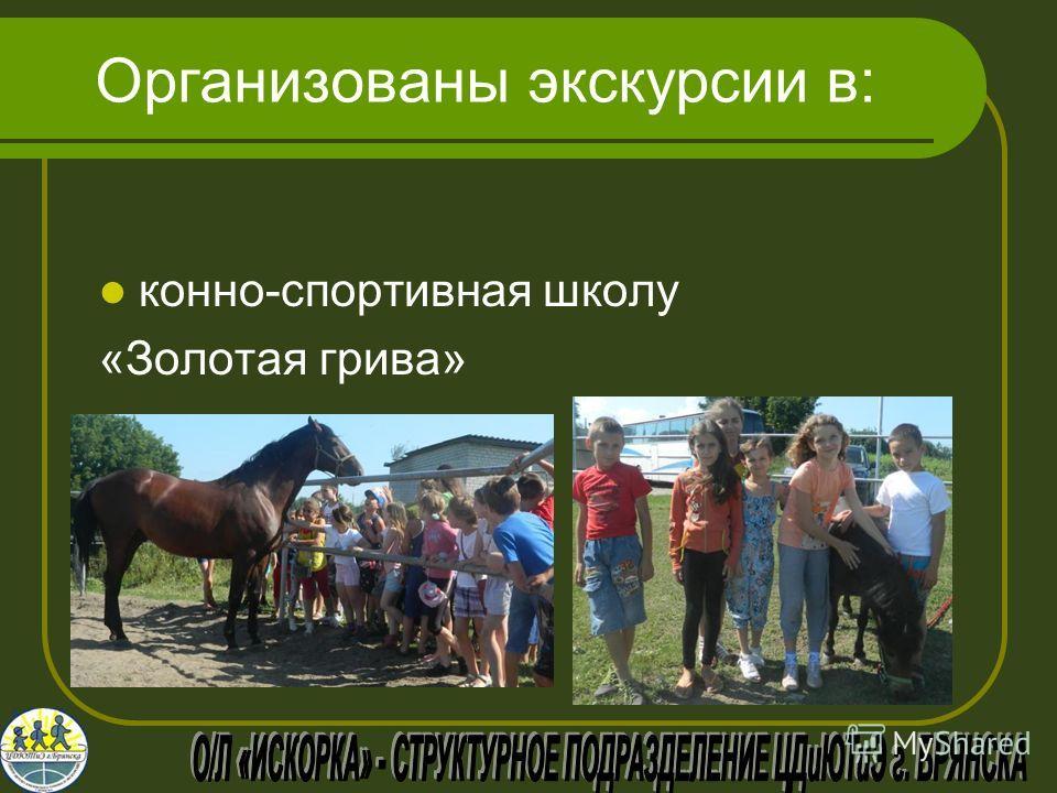 Организованы экскурсии в: конно-спортивная школу «Золотая грива»