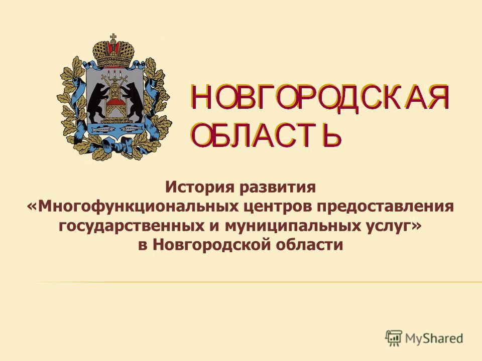История развития «Многофункциональных центров предоставления государственных и муниципальных услуг» в Новгородской области