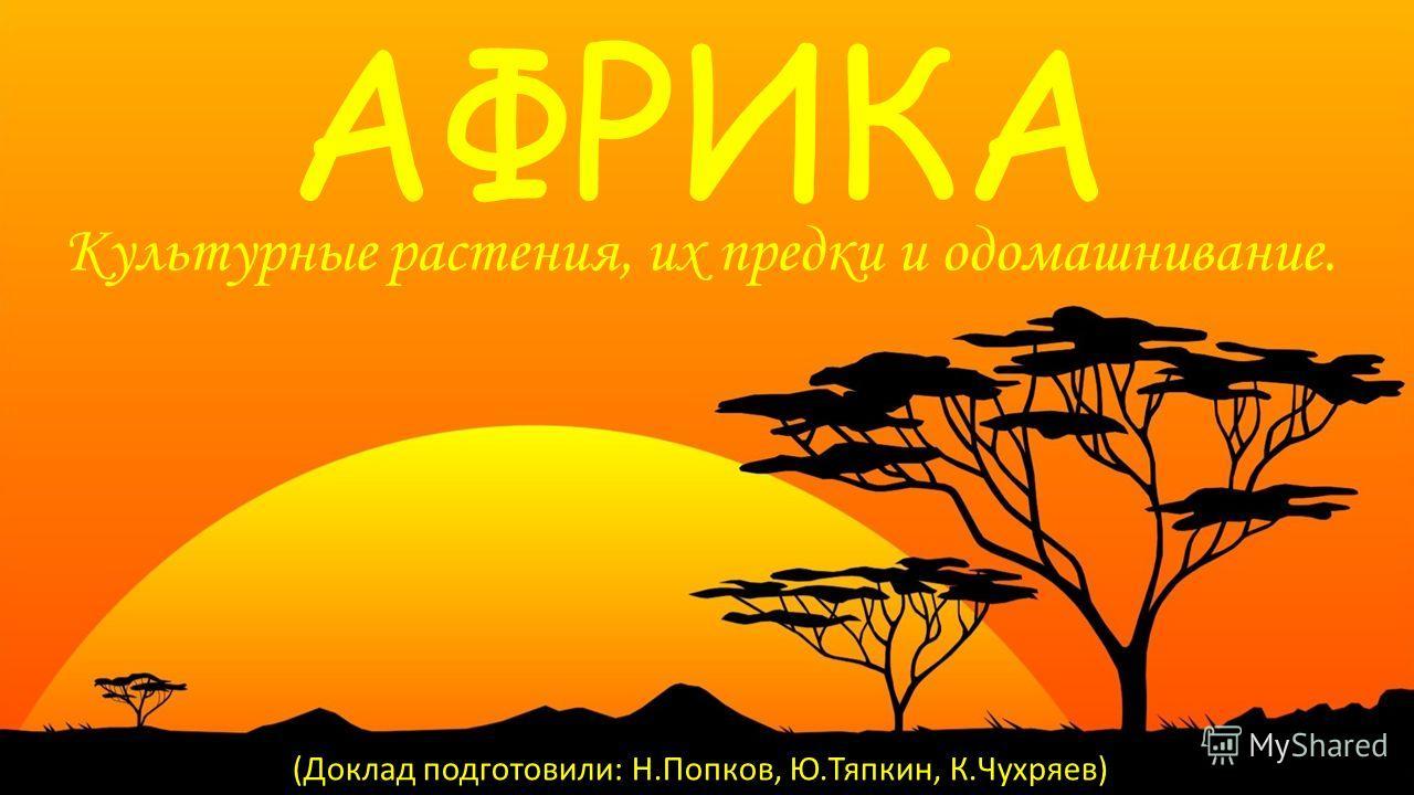 АФРИКА Культурные растения, их предки и одомашнивание. (Доклад подготовили: Н.Попков, Ю.Тяпкин, К.Чухряев)