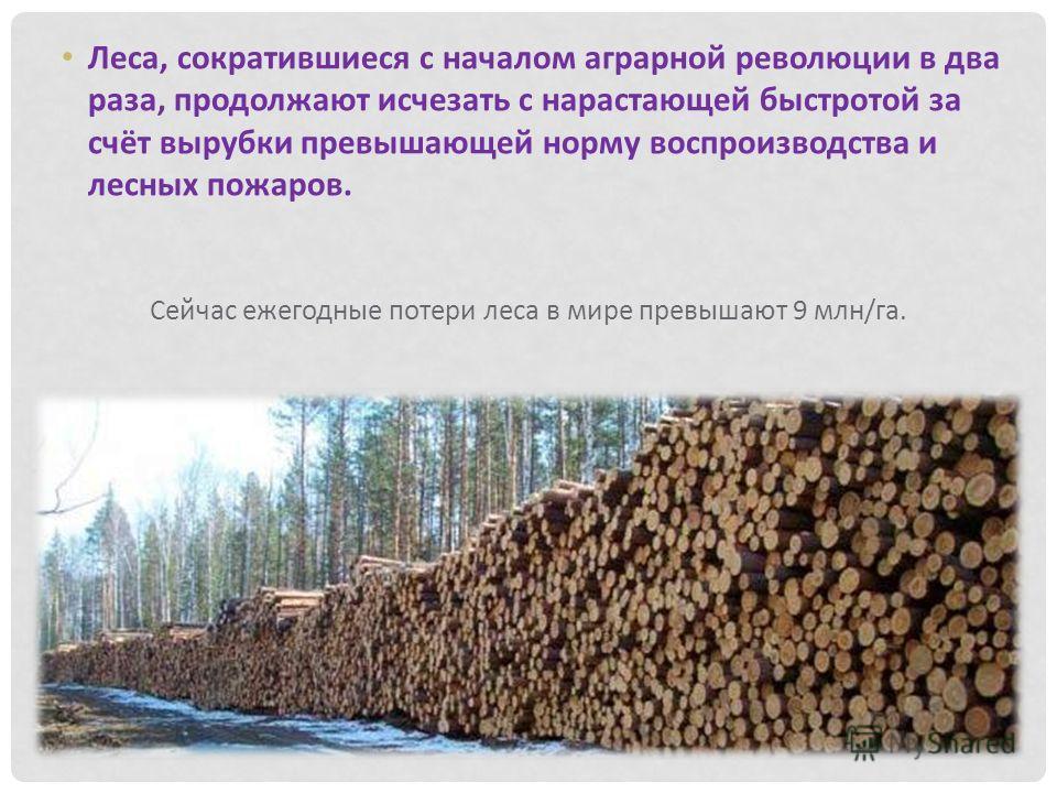 Сейчас ежегодные потери леса в мире превышают 9 млн/га. Леса, сократившиеся с началом аграрной революции в два раза, продолжают исчезать с нарастающей быстротой за счёт вырубки превышающей норму воспроизводства и лесных пожаров.
