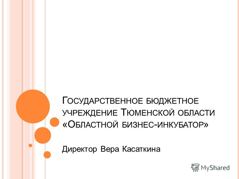 Г ОСУДАРСТВЕННОЕ БЮДЖЕТНОЕ УЧРЕЖДЕНИЕ Т ЮМЕНСКОЙ ОБЛАСТИ «О БЛАСТНОЙ БИЗНЕС - ИНКУБАТОР » Директор Вера Касаткина