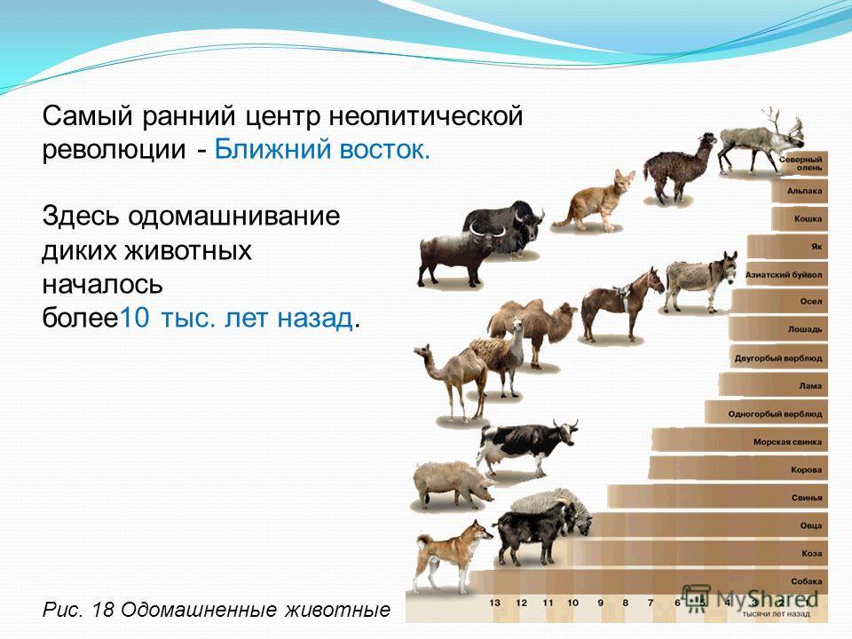 революции - Ближний восток. Рис. 18 Одомашненные животные Самый ранний центр неолитической Здесь одомашнивание диких животных началось более 10 тыс. лет назад.