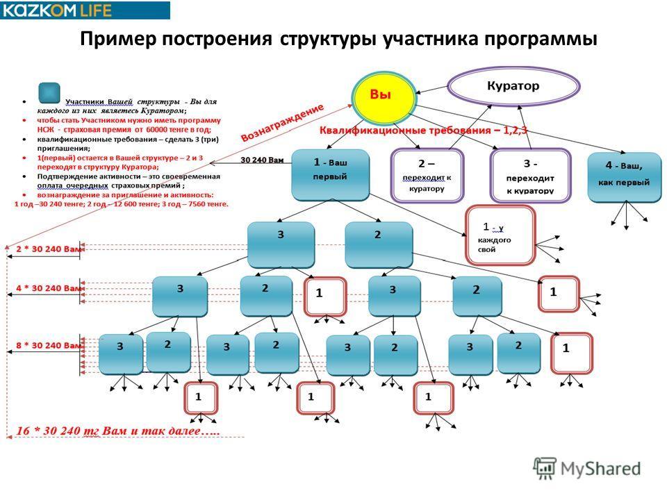 Пример построения структуры участника программы
