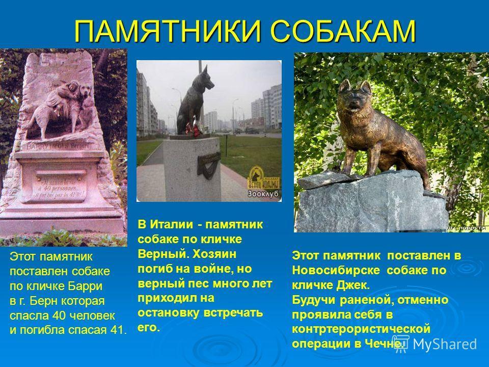 ПАМЯТНИКИ СОБАКАМ В Италии - памятник собаке по кличке Верный. Хозяин погиб на войне, но верный пес много лет приходил на остановку встречать его. Этот памятник поставлен в Новосибирске собаке по кличке Джек. Будучи раненой, отменно проявила себя в к