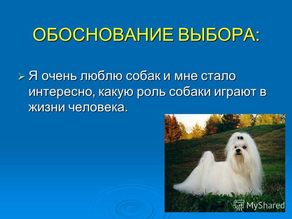 ОБОСНОВАНИЕ ВЫБОРА: Я очень люблю собак и мне стало интересно, какую роль собаки играют в жизни человека. Я очень люблю собак и мне стало интересно, какую роль собаки играют в жизни человека.