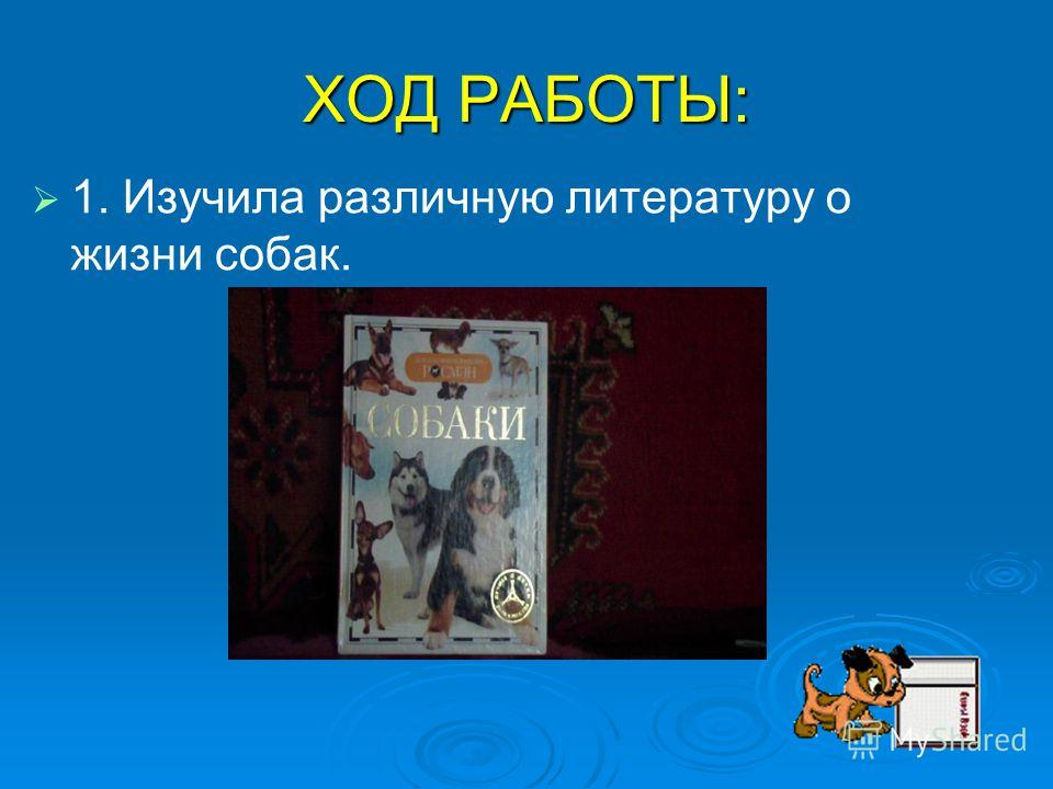 ХОД РАБОТЫ: 1. Изучила различную литературу о жизни собак.