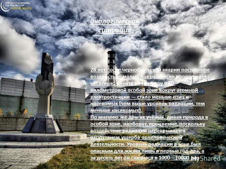 28 лет после чернобыльской аварии постоянное воздействие малых доз радиации продолжает негативно влиять на природу в 30- километровой особой зоне вокруг атомной электростанции стало меньше птиц и насекомых (чем выше уровень радиации, тем меньше насек