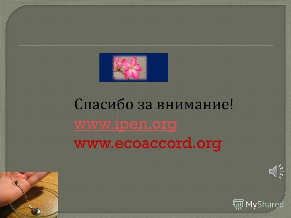 Спасибо за внимание! www.ipen.org www.ecoaccord.org www.ipen.org