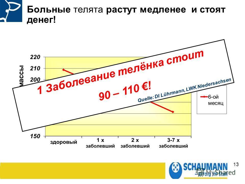 13 Больные телята растут медленнее и стоят денег! 1 Заболевание телёнка стоит 90 – 110 ! Quelle: DI Lührmann, LWK Niedersachsen