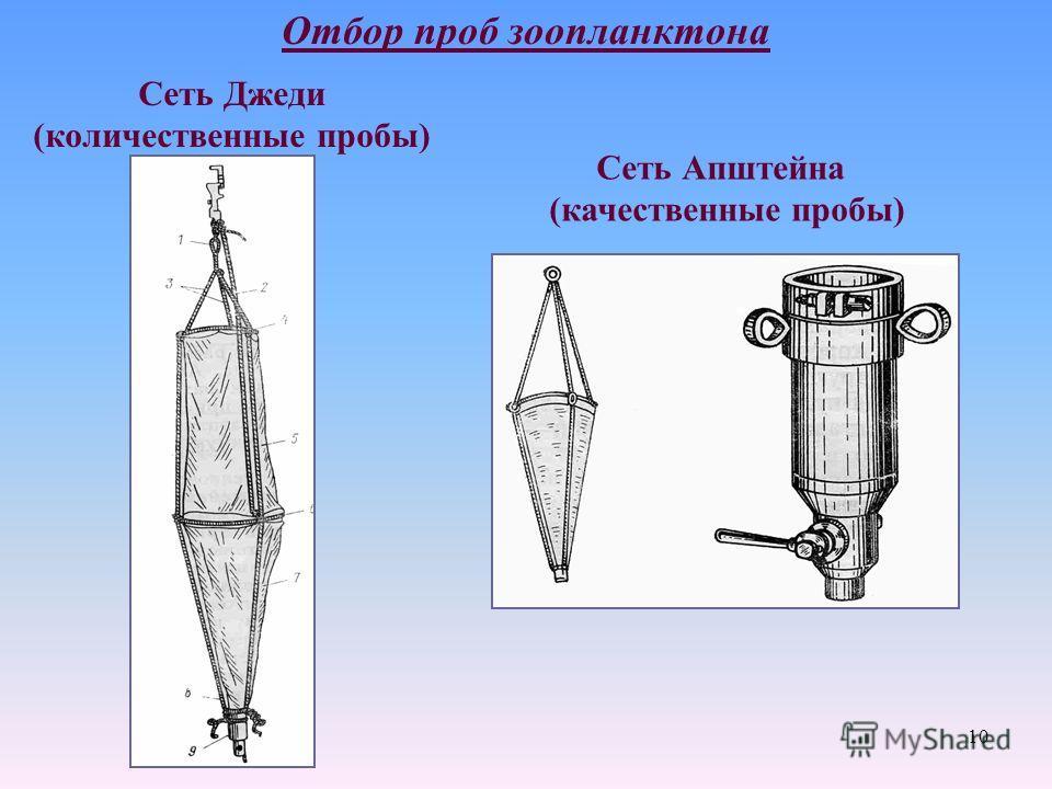 Отбор проб зоопланктона Сеть Джеди (количественные пробы) Сеть Апштейна (качественные пробы) 10