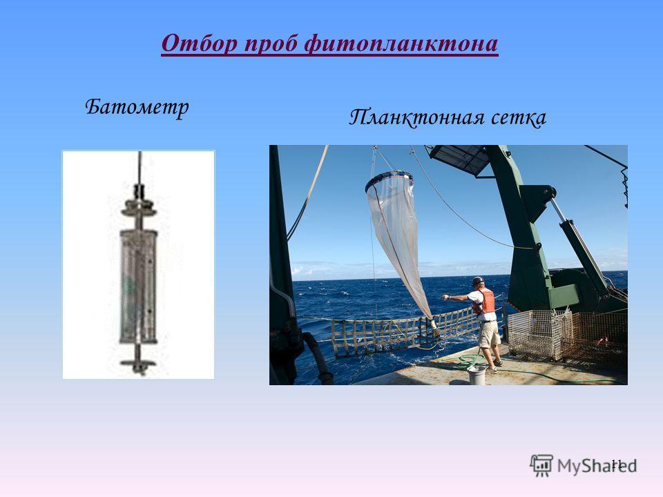 11 Отбор проб фитопланктона Батометр Планктонная сетка