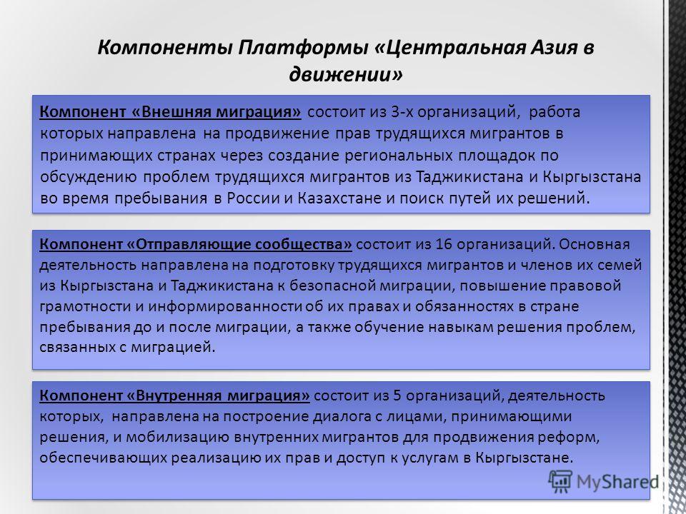 Компонент «Внешняя миграция» состоит из 3-х организаций, работа которых направлена на продвижение прав трудящихся мигрантов в принимающих странах через создание региональных площадок по обсуждению проблем трудящихся мигрантов из Таджикистана и Кыргыз