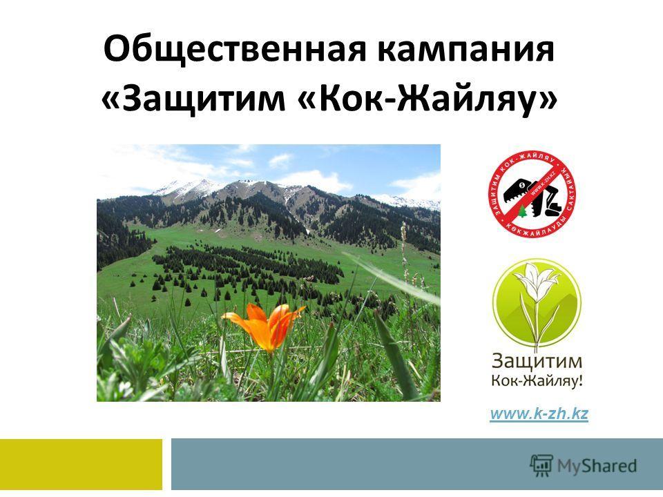 Общественная кампания «Защитим «Кок-Жайляу» www.k-zh.kz