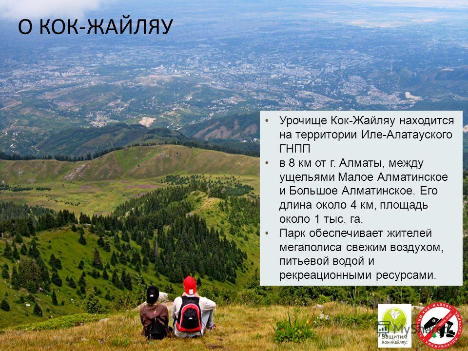Урочище Кок-Жайляу находится на территории Иле-Алатауского ГНПП в 8 км от г. Алматы, между ущельями Малое Алматинское и Большое Алматинское. Его длина около 4 км, площадь около 1 тыс. га. Парк обеспечивает жителей мегаполиса свежим воздухом, питьевой