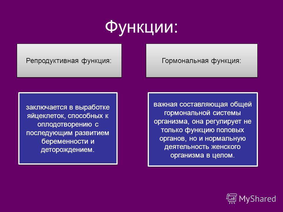 Функции:. Репродуктивная функция: Гормональная функция: важная составляющая общей гормональной системы организма, она регулирует не только функцию половых органов, но и нормальную деятельность женского организма в целом. заключается в выработке яйцек