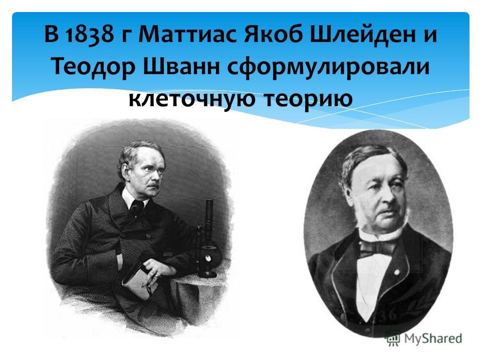 В 1838 г Маттиас Якоб Шлейден и Теодор Шванн сформулировали клеточную теорию