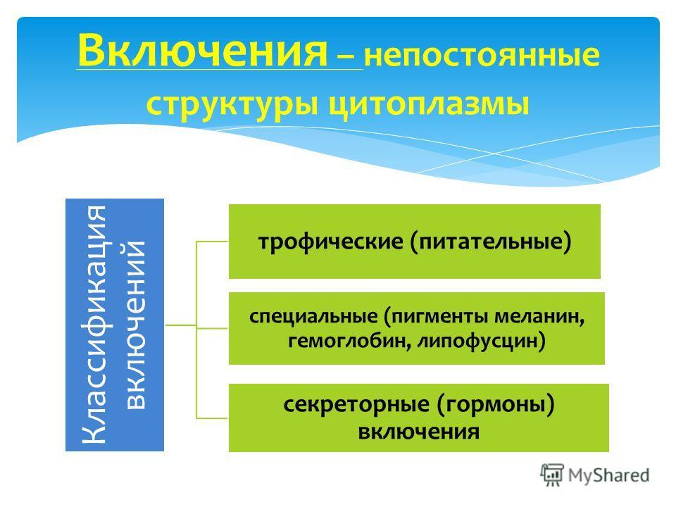 Классификация включений трофические (питательные) специальные (пигменты меланин, гемоглобин, липофусцин) секреторные (гормоны) включения Включения – непостоянные структуры цитоплазмы