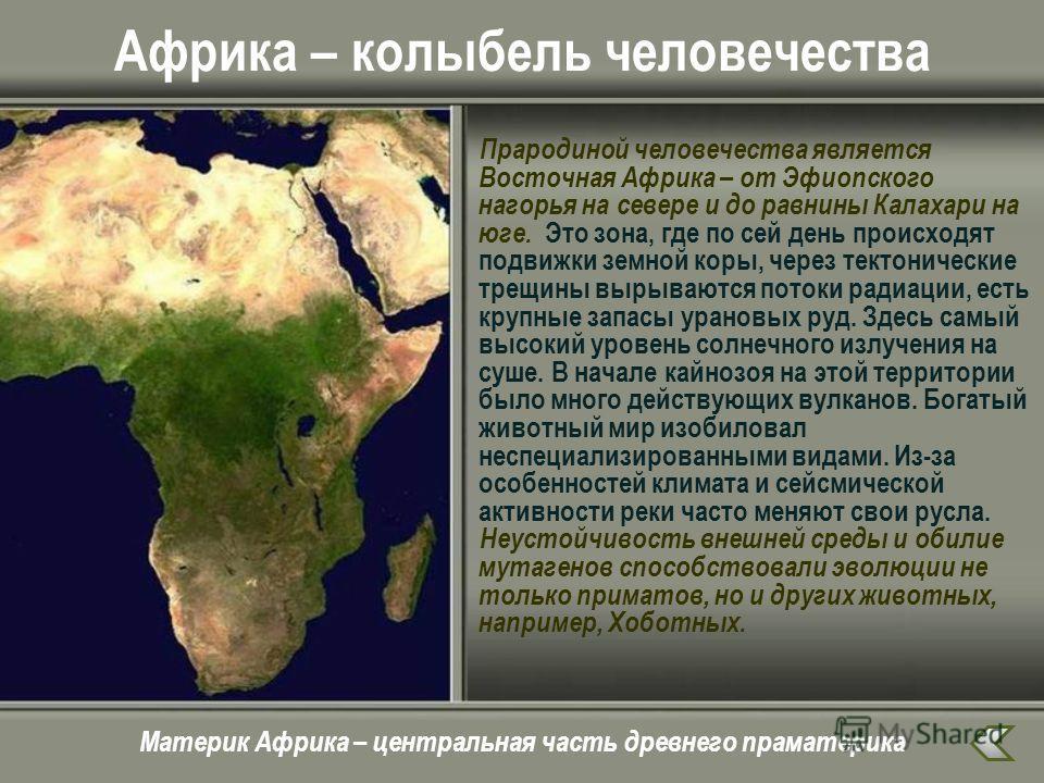 Африка – колыбель человечества Прародиной человечества является Восточная Африка – от Эфиопского нагорья на севере и до равнины Калахари на юге. Это зона, где по сей день происходят подвижки земной коры, через тектонические трещины вырываются потоки