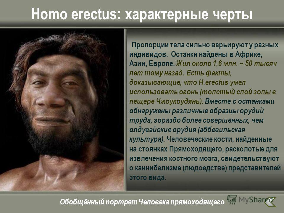 Homo erectus: характерные черты Пропорции тела сильно варьируют у разных индивидов. Останки найдены в Африке, Азии, Европе. Жил около 1,6 млн. – 50 тысяч лет тому назад. Есть факты, доказывающие, что H.erectus умел использовать огонь (толстый слой зо