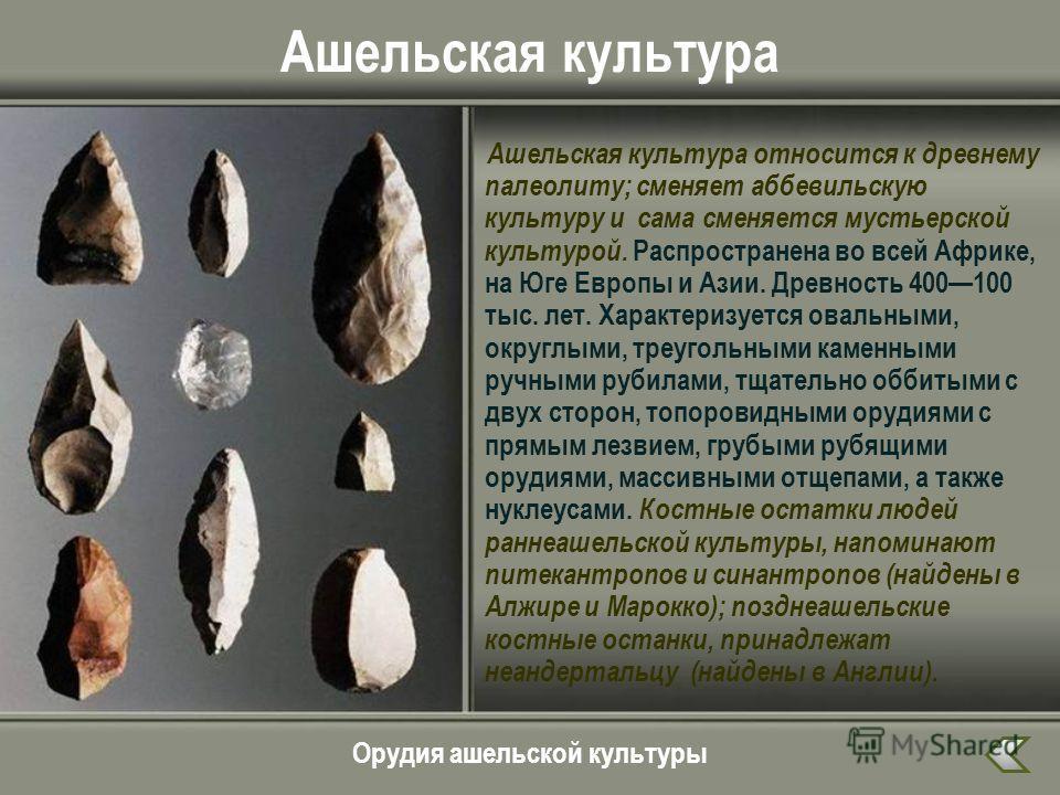 Ашельская культура Ашельская культура относится к древнему палеолиту; сменяет аббевильскую культуру и сама сменяется мустьерской культурой. Распространена во всей Африке, на Юге Европы и Азии. Древность 400100 тыс. лет. Характеризуется овальными, окр
