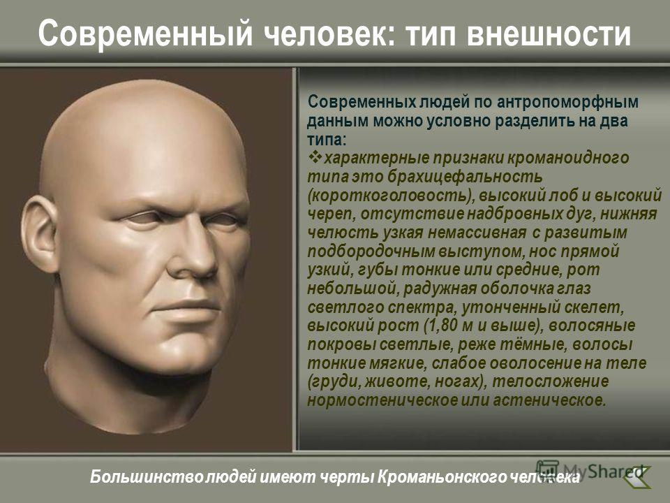 Современный человек: тип внешности Современных людей по антропоморфным данным можно условно разделить на два типа: характерные признаки кроманоидного типа это брахицефальность (короткоголовость), высокий лоб и высокий череп, отсутствие надбровных дуг