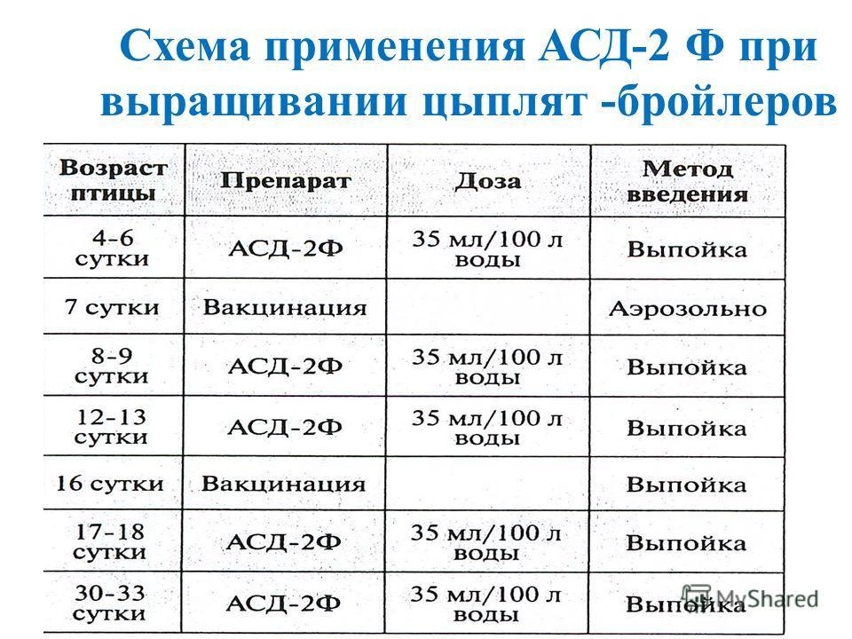 Схема применения АСД-2 Ф при выращивании цыплят -бройлеров