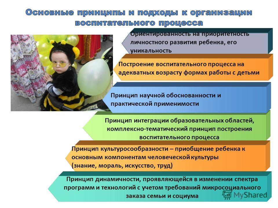 Принцип динамичности, проявляющейся в изменении спектра программ и технологий с учетом требований микросоциального заказа семьи и социума Принцип интеграции образовательных областей, комплексно-тематический принцип построения воспитательного процесса