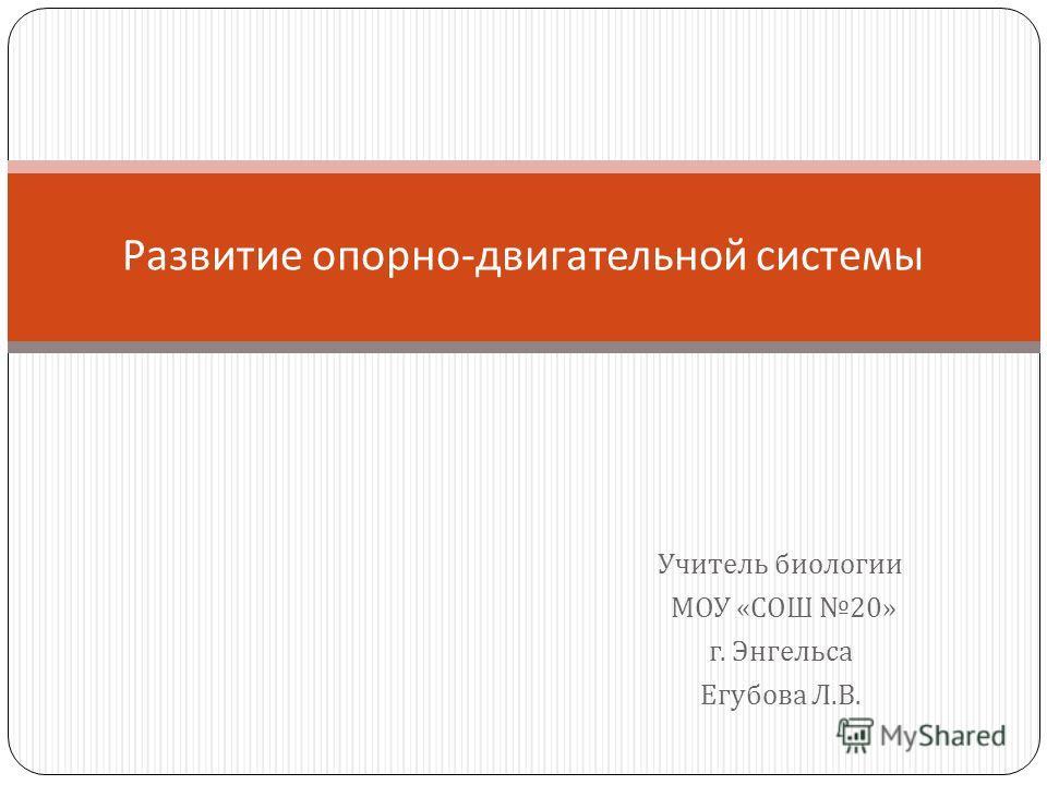 Учитель биологии МОУ « СОШ 20» г. Энгельса Егубова Л. В. Развитие опорно - двигательной системы