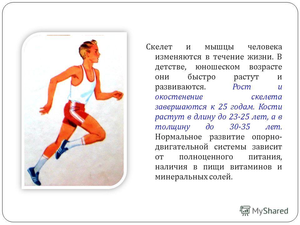 Скелет и мышцы человека изменяются в течение жизни. В детстве, юношеском возрасте они быстро растут и развиваются. Рост и окостенение скелета завершаются к 25 годам. Кости растут в длину до 23-25 лет, а в толщину до 30-35 лет. Нормальное развитие опо