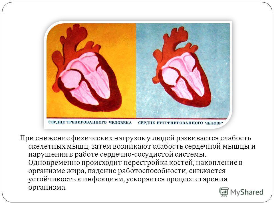 При снижение физических нагрузок у людей развивается слабость скелетных мышц, затем возникают слабость сердечной мышцы и нарушения в работе сердечно - сосудистой системы. Одновременно происходит перестройка костей, накопление в организме жира, падени